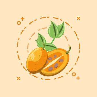 Tree tomato over orange background