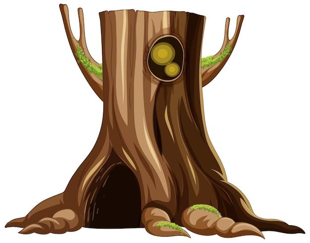 Tronco d'albero con grande incavo