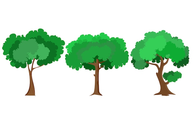 Tree vector flat design