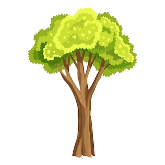 緑の葉を持つツリー。抽象的な様式化されたツリー。水彩の葉。自然なイラスト