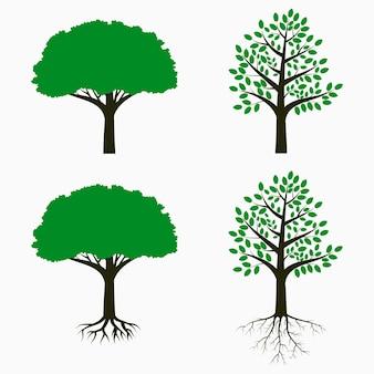 根と葉を持つ木。木のセット。ベクトルイラスト。