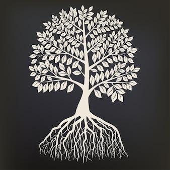 暗い背景、オークの輪郭に分離されたルートシステムシルエットを持つツリー。詳細画像
