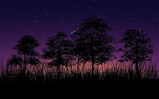 밤에 나무와 잔디 실루엣