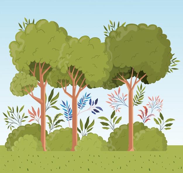 木々や茂みの風景シーンと葉