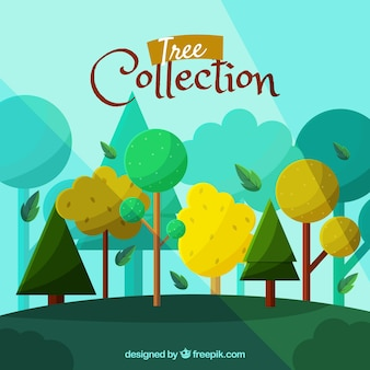 Trees collection in flat syle