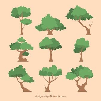 2d 스타일의 나무 컬렉션