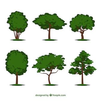 Коллекция деревьев в стиле 2d