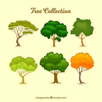Trees collection in hand drawn style