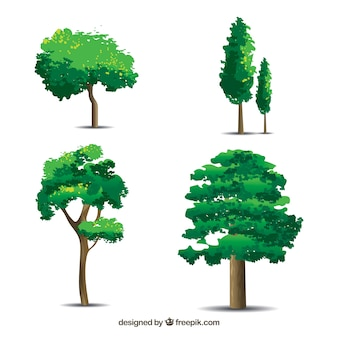Trees collection with realistic style