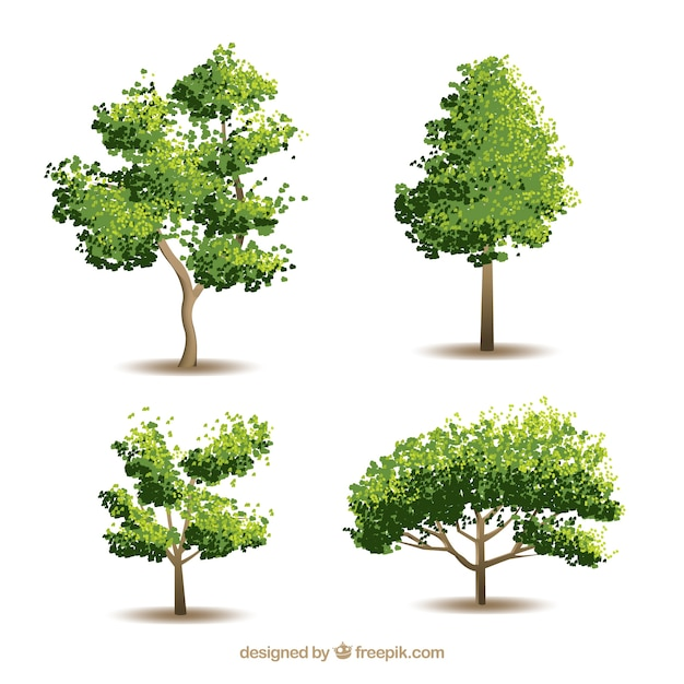 picture trees