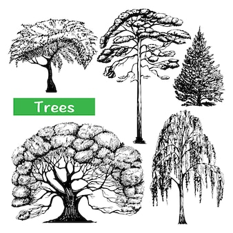 Trees hand drawn black icons set