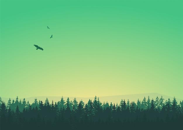 Силуэт деревьев с птицами в зеленой сцене неба