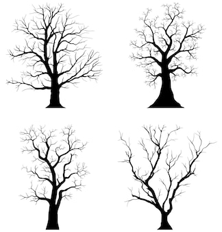 Trees silhouettes on white background