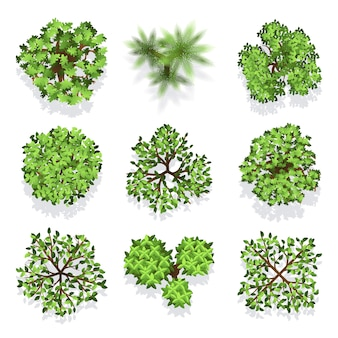 Trees top view vector set for landscape design and map. green tree for garden, illustration trees fo