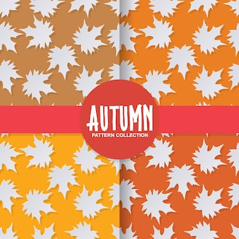 Trendy 3d paper cut style autumn leaves on colorful background