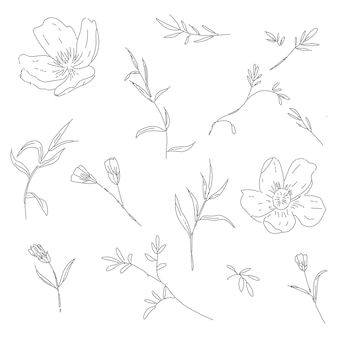 Trendy collection of hand drawn line art floral element with cherry blossom leaves