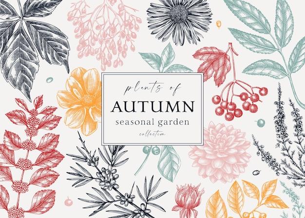 トレンディな色の秋のバナーデザイン紅葉ベリーとエレガントな植物のテンプレート