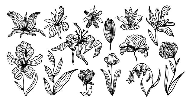Модный цветочный комплект в черно-белом цвете