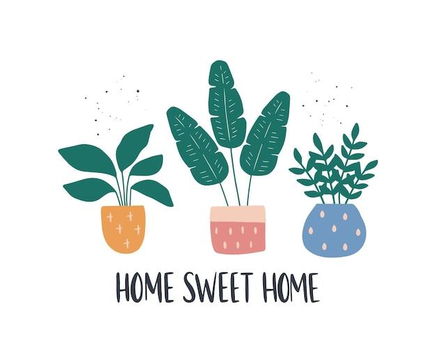観葉植物とトレンディな家の装飾