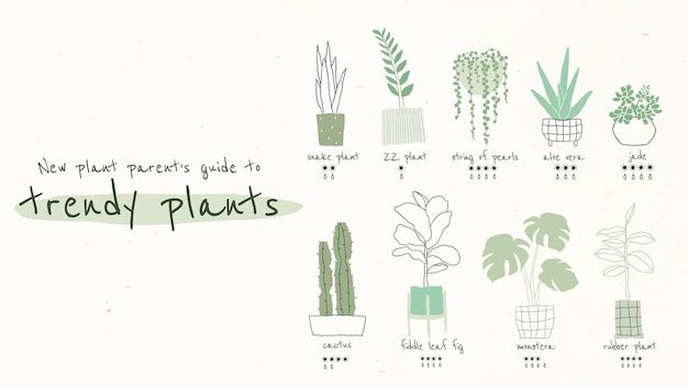 Trendy houseplant guide template vector for blog banner