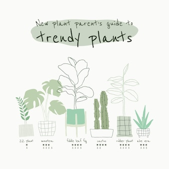 Trendy houseplant guide template vector for social media