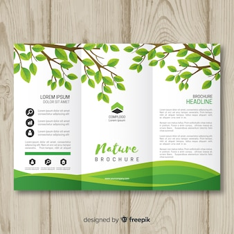 Шаблон брошюры о природе triflod