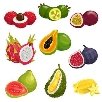 Тропические и экзотические фрукты, изолированные на белом фоне