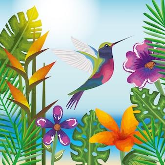 Тропический и экзотический сад с колибри