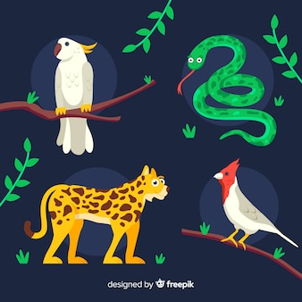 Tropical animal collection flat design