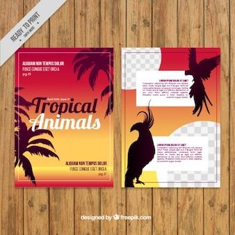 熱帯動物誌テンプレート