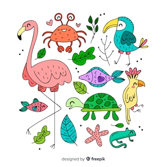 Tropical animals set: flamingo, crab, bird, fish, turtle, chameleon