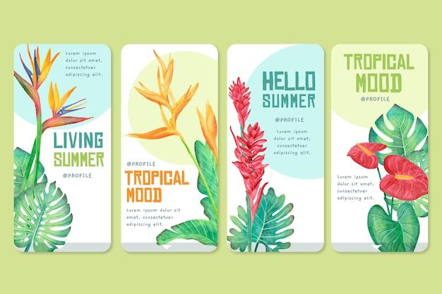 Tropical app interface set