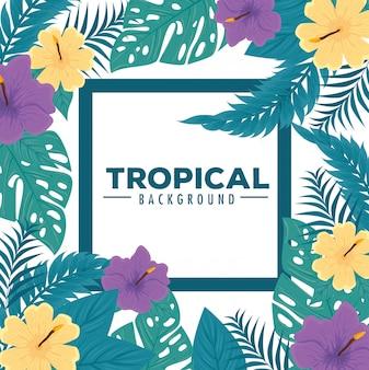 Тропический фон, рамка из цветов фиолетового и желтого цвета с тропическими листьями, украшение цветами и тропическими листьями
