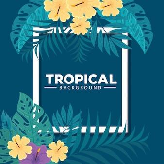 Tropical background, hibiscus yellow and purple color, with branches and leaves plants