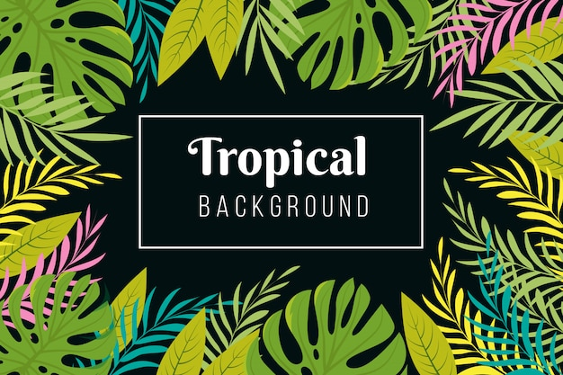 Tropical background. rainforest palm tree leaves frame. jungle forest planting  exotic wallpaper