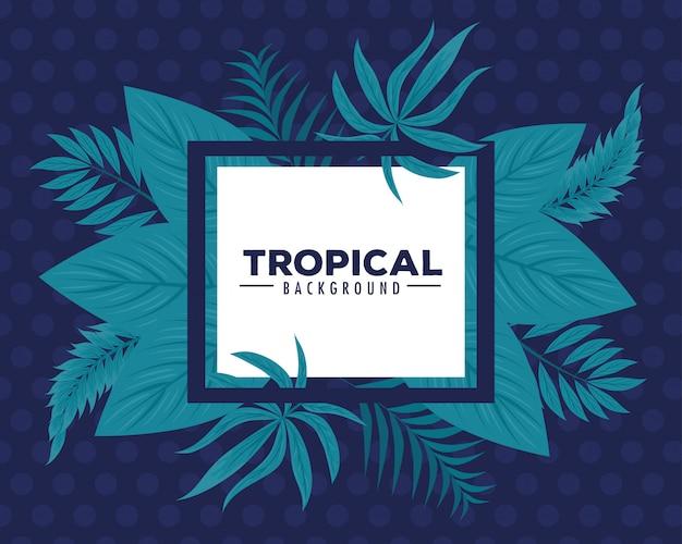 Тропический фон, квадратная рамка с ветвями и тропические листья