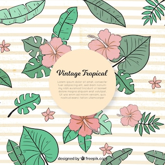 Tropical background in vintage style