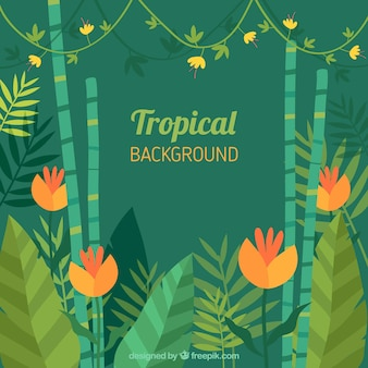 Tropical background with colorful plants