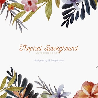 Tropical background with different plants in watercolor style