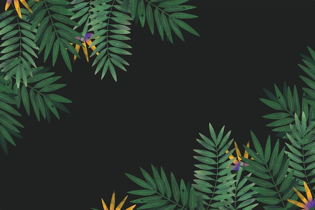 Tropical background with empty space