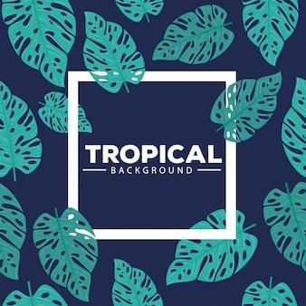 Тропический фон, с рамой и листьями растений