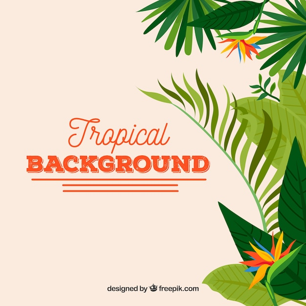 b98d2428d Tropical background with green leaves