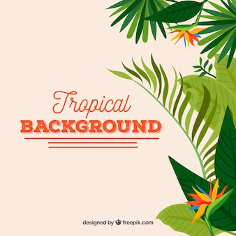 Tropical background with green leaves