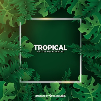 Tropical background with green plants