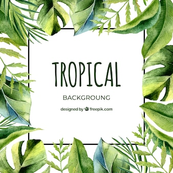 Tropical background with leaves in watercolor style