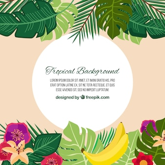 Tropical background with nature