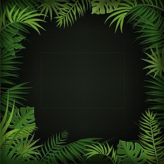 Тропический фон с пальмовыми листьями, монстера и травами