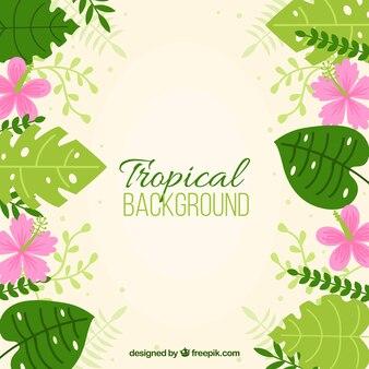 植物と花のトロピカルな背景
