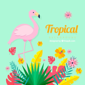 Tropical background with plants and flamingo