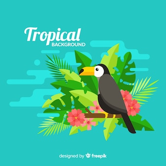 Tropical background with toucan and flowers
